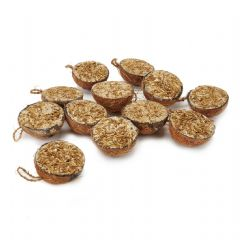 Half Coconut - 12 Pack Box - Mealworm